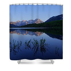 Gentle Spring Shower Curtain by Chad Dutson