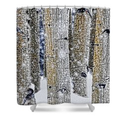 Gently Falling Forest Snow Shower Curtain by Don Schwartz