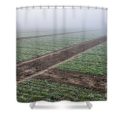 Geometry In Agriculture Shower Curtain by Hannes Cmarits