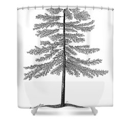 Georgian Bay  Shower Curtain