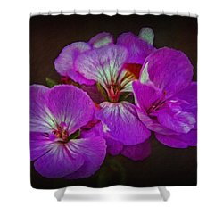 Shower Curtain featuring the photograph Geranium Blossom by Hanny Heim