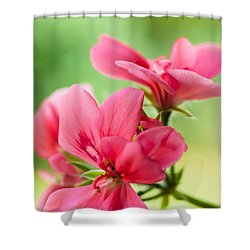 Geranium Gift Shower Curtain