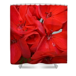 Geranium Red Shower Curtain