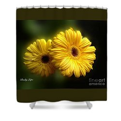 Shower Curtain featuring the photograph Gerber Babies by Becky Lupe