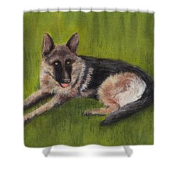 German Shepherd Shower Curtain by Anastasiya Malakhova