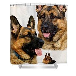 German Shepherd Collage Shower Curtain by Sandy Keeton