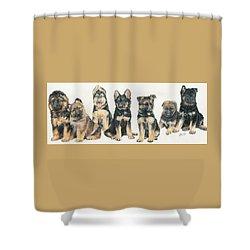German Shepherd Puppies Shower Curtain by Barbara Keith