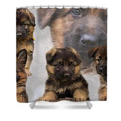 German Shepherd Puppy Collage Shower Curtain by Sandy Keeton