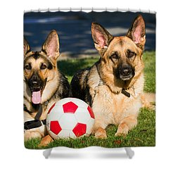 Shower Curtain featuring the photograph German Shepherd Sisters by Eleanor Abramson