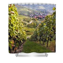 German Vineyard Shower Curtain by Sharon Foster