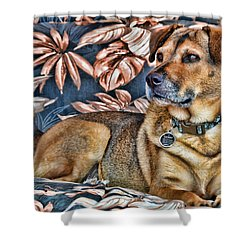 Gerry And The Lounge Chair Shower Curtain