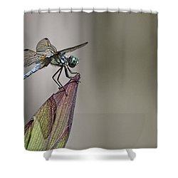 Get A Grip Shower Curtain
