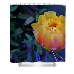 Get To The Point Shower Curtain by Warren Thompson