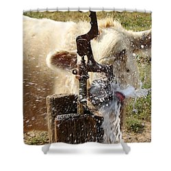 Getting A Drink Shower Curtain