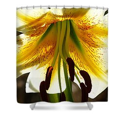 Getting Intimate Shower Curtain