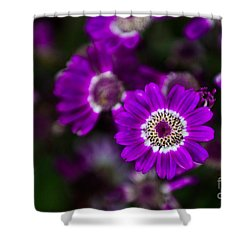 Getting Noticed Shower Curtain by Syed Aqueel