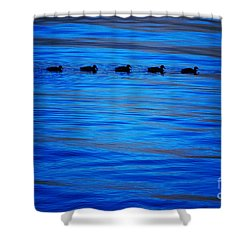 Getting Your Ducks In A Row Shower Curtain