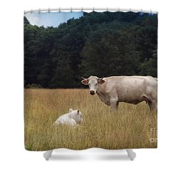 Ghost Cow And Calf Shower Curtain