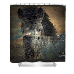 Ghost Pony Shower Curtain