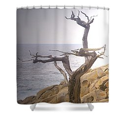 Ghost Tree Detail Shower Curtain by Barbara Snyder