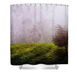Ghost Tree In The Haunted Forest. Nuwara Eliya. Sri Lanka Shower Curtain by Jenny Rainbow