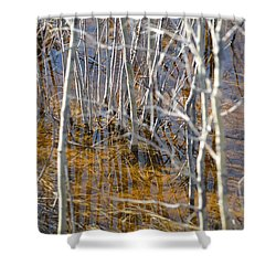 Shower Curtain featuring the photograph Ghost Willows by Brian Boyle