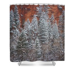 Ghosts Of Winter Shower Curtain by Peter Coskun
