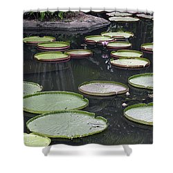 Shower Curtain featuring the photograph Giant Lily Pads by Shoal Hollingsworth