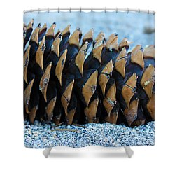 Giant Pinecone Shower Curtain