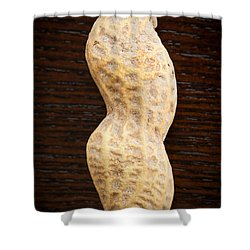Giant Single Peanut  Shower Curtain by Sharon Dominick