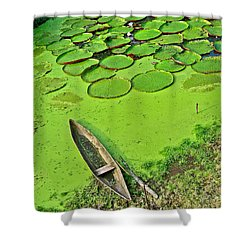 Giant Water Lilies And A Dugout Canoe In Amazon Jungle-peru Shower Curtain