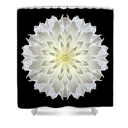 Giant White Dahlia Flower Mandala Shower Curtain