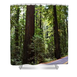 Giants And The Road Shower Curtain