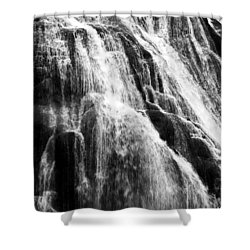 Gibbon Falls Shower Curtain by Bill Gallagher