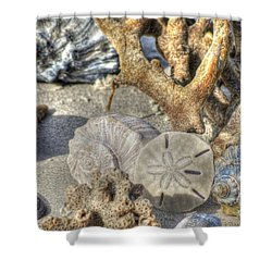 Gifts From The Sea Shower Curtain by Benanne Stiens