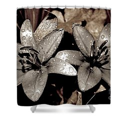 Shower Curtain featuring the photograph Gilded Lilies by Linda Bianic