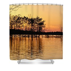 Gilded Sunset Shower Curtain by Julie Andel
