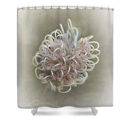 Gillian Shower Curtain by Elaine Teague