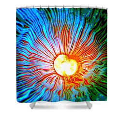 Shower Curtain featuring the photograph Gills by Deena Stoddard