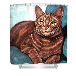 Ginger Tabby Shower Curtain by VLee Watson