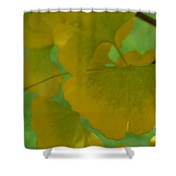 Ginkgo Leaves Abstract Shower Curtain