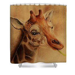 Giraffe Shower Curtain by Jean Cormier