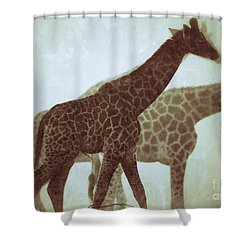Giraffes In The Mist Shower Curtain by Nick  Biemans