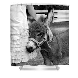Girl And Baby Donkey Shower Curtain by Brooke T Ryan
