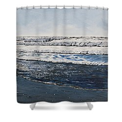 Girl And Dog Walking On The Beach Shower Curtain