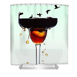 Girl And Geese Liquid Art Shower Curtain