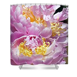 Shower Curtain featuring the photograph Girly Girls by Lilliana Mendez