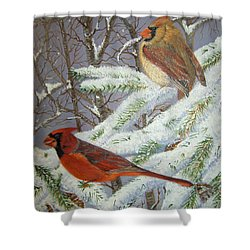 Shower Curtain featuring the painting Give Her Wings To Fly by Brenda Brown