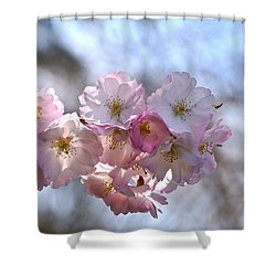 Giving Thanks Shower Curtain by Byron Varvarigos
