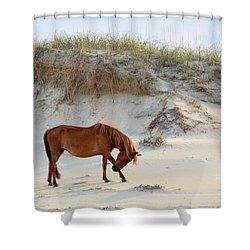 Giving Thanks Shower Curtain by Debbie Green